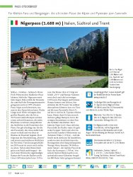 Pass-Steckbrief: Italien: Nigerpass