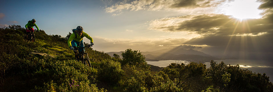 Headerbild Mountainbike
