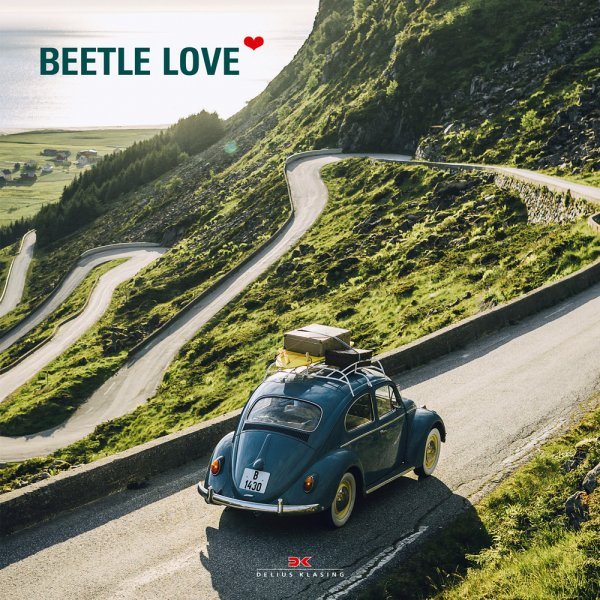 Beetle Love - English
