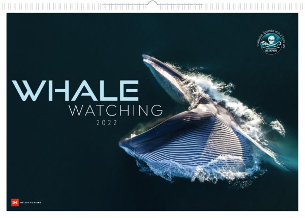 Whale Watching 2022